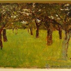 Arte: PALAVENA, CAMPANIA, ITALIA. ÓLEO/CARTÓN. RAFFAELE TAFURI (1857-1929).. Lote 34217681