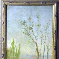 Arte: PAISAJE. ÓLEO SOBRE TABLA. FIRMADO: VALL (MAURO VALL QUER, BARCELONA 1904-1992). Lote 35334680