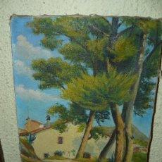Arte: OLEO / TELA - ANÓNIMO - MASÍA. Lote 37587383
