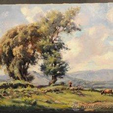 Arte: EXCELENTE OLEO SOBRE TELA, PAISAJE, FIRMA OLIVET LEGARES (1885-1956). Lote 38042973