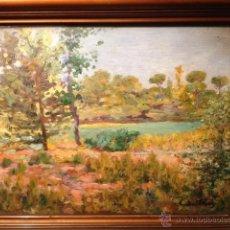 Arte: INTERESANTE PAISAJE, OLEO SOBRE TABLA, ESTILO IMPRESIONISTA, FIRMA ILEGIBLE, FECHADO 1946. Lote 40388597