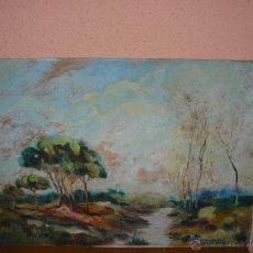 Arte: OLEO / TABLEX - ANÓNIMO - PAISAJE. Lote 41640259
