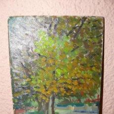 Arte: OLEO / TABLEX - ANÓNIMO - CASTELLDEFELS - 1979. Lote 41775879