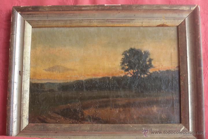 PAISAJE. ÓLEO SOBRE LIENZO (Arte - Pintura - Pintura al Óleo Antigua sin fecha definida)