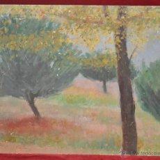 Arte: JAIME CASAS. OLEO SOBRE TABLEX. REPRESENTANDO UN PAISAJE. Lote 44367941