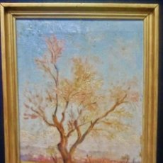 Arte: PAISAJE. ÓLEO SOBRE LIENZO. FIRMADO P. COLLADO (VALLADOLID 1874-1951). AL DORSO, VALLADOLID 1938.. Lote 45564216