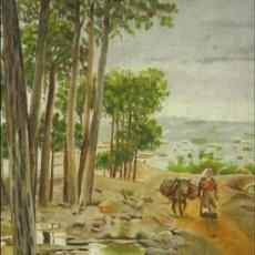 Arte: PAISAJE CON CAMPESINA. ÓLEO SOBRE CARTÓN. FIRMADO COLLADO (VALLADOLID 1870-1951).. Lote 35334745