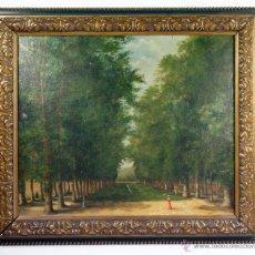Arte: P.HORSIN, 1896. ÓLEO SOBRE LIENZO, 46X38 CM. MARCO: 49X57 CM.. Lote 49108230