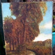 Arte: CRESSINI CARLO (1864-1938) - PINTOR ITALIANO - ÓLEO SOBRE LIENZO.. Lote 50851569