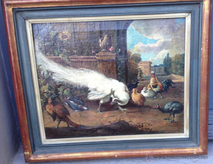 ANÓNIMO EUROPEO - SIGLO XVIII - OLEO SOBRE TELA - ANIMALES (Arte - Pintura - Pintura al Óleo Antigua siglo XVIII)