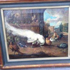 Arte: ANÓNIMO EUROPEO - SIGLO XVIII - OLEO SOBRE TELA - ANIMALES. Lote 51551099