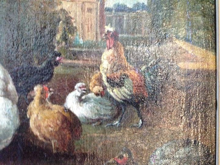 Arte: ANÓNIMO Europeo - Siglo XVIII - Oleo sobre tela - Animales - Foto 4 - 51551099