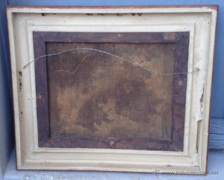 Arte: ANÓNIMO Europeo - Siglo XVIII - Oleo sobre tela - Animales - Foto 7 - 51551099