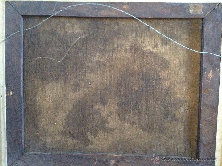 Arte: ANÓNIMO Europeo - Siglo XVIII - Oleo sobre tela - Animales - Foto 8 - 51551099