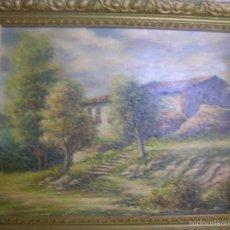 Arte: PRECIOSA PINTURA ÓLEO SOBRE TELA DE UN BOSQUE CON UN MARCO BONITO. Lote 55236371