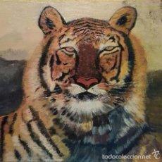 Arte: PINTURA OLEO, RETRATO DE TIGRE. ESTA FIRMADO.. Lote 55867557