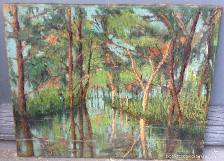 DECOROSO BONIFANTI (1860-1941) PINTOR ITALIANO - ÓLEO SOBRE TELA (Arte - Pintura - Pintura al Óleo Moderna sin fecha definida)