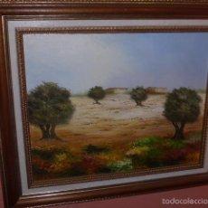 Arte: PINTURA AL OLEO SOBRE LIENZO, FIRMADA . Lote 56688661