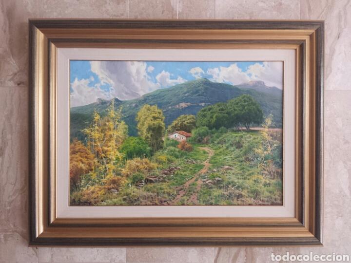 RICARDO QUIROGA (Arte - Pintura - Pintura al Óleo Contemporánea )