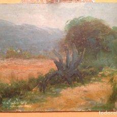 Arte: ANÓNIMO. PAISAJE. MÉXICO.. Lote 66980718