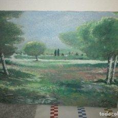 Arte: OLEO GRANULADO SOBRE LIENZO PAISAJE BUEN PINTURA - FIRMADO MEDIDA 73 X 54 CM.. Lote 67766141