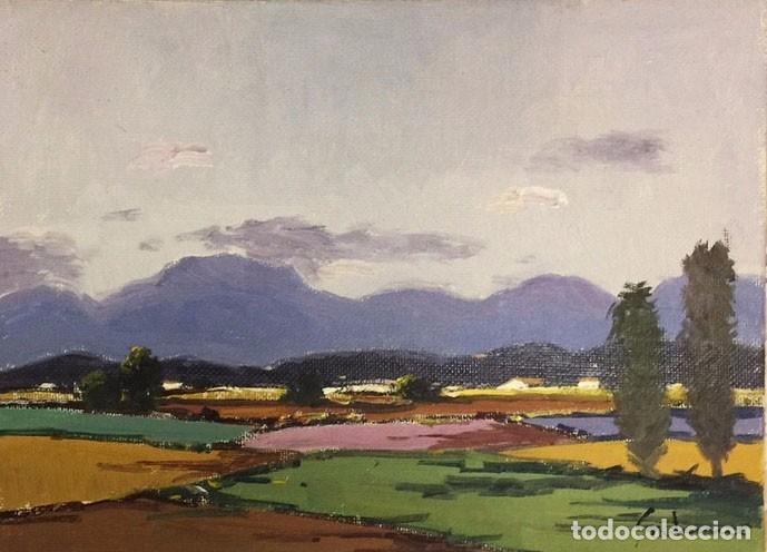 ANTONI SADURNÍ (1927-2014) (Arte - Pintura - Pintura al Óleo Contemporánea )