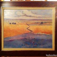 Arte: ÓLEO SOBRE TELA FIRMADO CAÑAS MEDIDAS 108X90CM. Lote 80303609