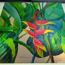 Arte: COLORIDO OLEO SOBRE LIENZO TITULADO HELICONIA - FIRMADO DAMIRA DARIRHE 95 -. Lote 81190440