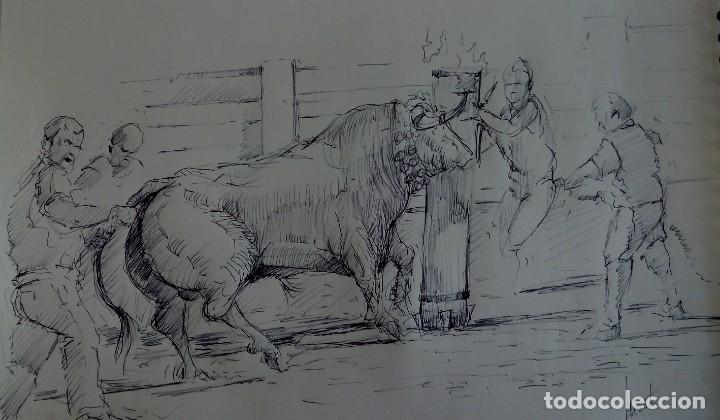 DIBUJO A BOLÍGRAFO NEGRO. APUNTE ORIGINAL DE AUTOR. TORO EMBOLADO. (Arte - Pintura Directa del Autor)