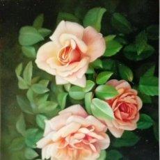Arte: ESPECTACULARES ROSAS. Lote 83942976