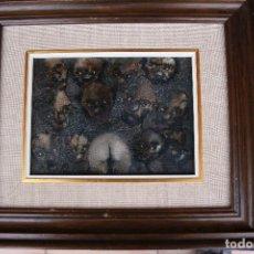 Arte: CARLES GARCÍA DELMÁS ( BARCELONA 1930 ). Lote 84971888