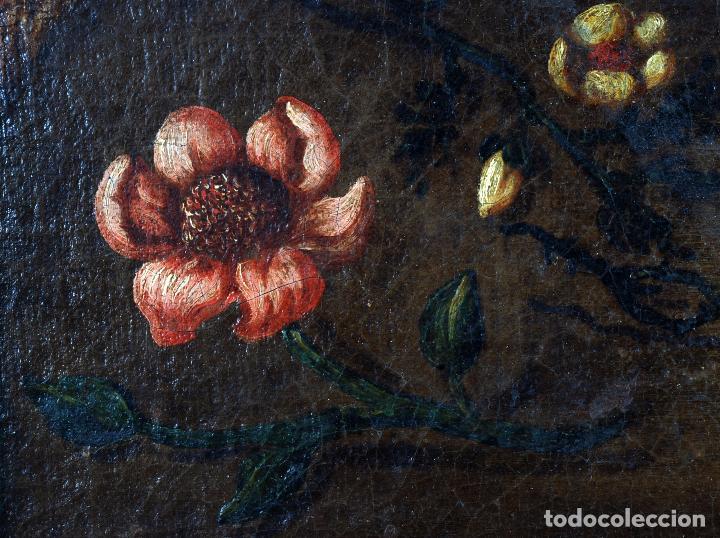 Arte: Niño de la espina óleo sobre lienzo escuela andaluza siglo XVII - Foto 7 - 89271488