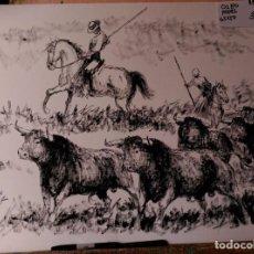 Arte: TOROS EN EL CAMPO CON EL MAYORAL. LOPEZ CANITO. Lote 91511625