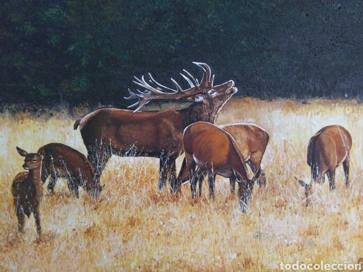 Arte: Berrea ciervos - Foto 2 - 91688615