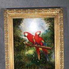 Arte: ÓLEO SOBRE TABLA - LOROS - CHELSEA GALLERY - FIRMADO -. Lote 95200436