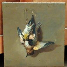 Arte: ESCUELA ESPAÑOLA DEL SIGLO XVIII. OLEO SOBRE TELA FIRMADO Y CON NUMERO INVENTARIO.. BODEGON DE AVES. Lote 96594787