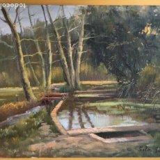 Arte: JOAN SOLER GIL, BASSA D'AIGÜA PAISATGE 46X33 CM.. Lote 100694823