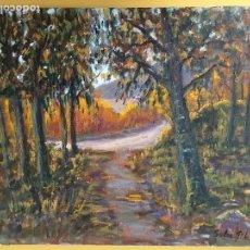 Arte: JOAN SOLER GIL,OLOT 8 PAISATGE 46X33 CM.. Lote 100696903