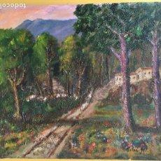 Arte: JOAN SOLER GIL,MONTSENY 8 PAISATGE 46X33 CM.. Lote 100701503