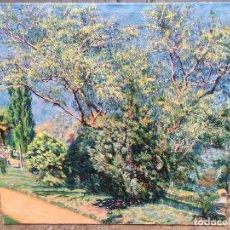 Arte: PEDRO BLANES VIALE (ATTRIB.) (1879-1926) PINTOR URUGUAYO - ÓLEO SOBRE TELA (REENTELADO). Lote 101493031