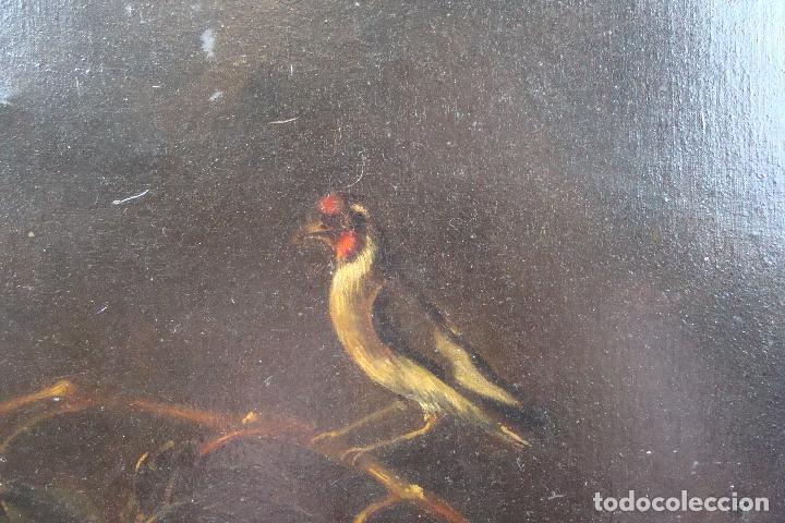 Arte: Óleo sobre lienzo Bodegón - Siglo XX - Foto 4 - 101638691