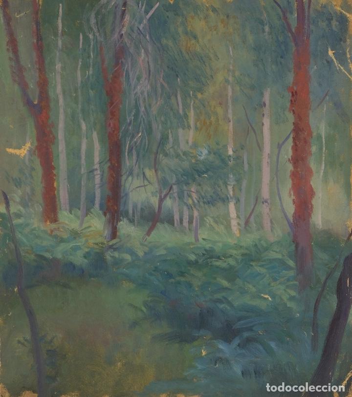 ÓLEO SOBRE LIENZO PAISAJE ÁRBOLES SEGUNDA MITAD SIGLO XX (Arte - Pintura - Pintura al Óleo Contemporánea )