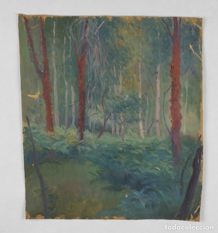 Arte: Óleo sobre lienzo Paisaje árboles segunda mitad siglo XX - Foto 2 - 102419111