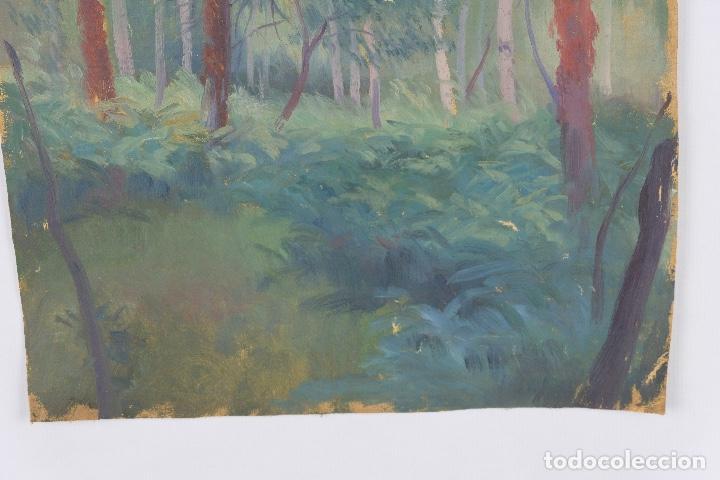 Arte: Óleo sobre lienzo Paisaje árboles segunda mitad siglo XX - Foto 5 - 102419111