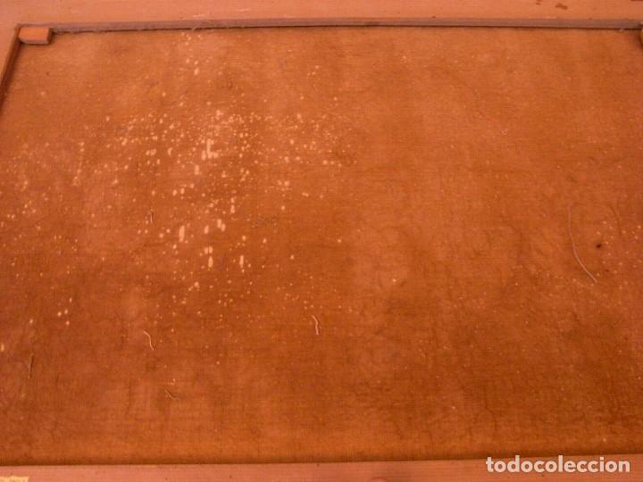 Arte: M.BENET, FLORES Y CERAMICA, 1917, CON DEDICATORIA - Foto 8 - 104822343