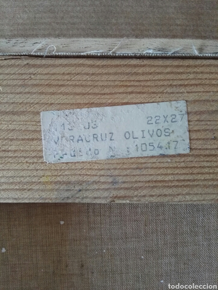 Arte: Pintura oleo sobre lienzo N Veracruz titulo olivos - Foto 8 - 106581592