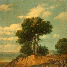 Arte: CAYETANO BENAVENT ROCAMORA (REUS, 1834 - BARCELONA, 1910) OLEO SOBRE TELA. PAISAJE CON FIGURA. Lote 106677815