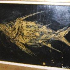 Arte: FERNANDO CALDERÓN - ÓLEO - PEZ - SANTANDER (1928-2003) - 65 X 50 CM. Lote 108694455