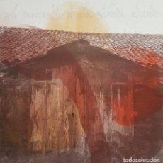 "Arte: JOSÉ LAPASIÓ EXCELENTE CUADRO ORIGINAL ""TESTIGOS DEL SENDERO II"" 50X50 CM. COA . Lote 109251903"