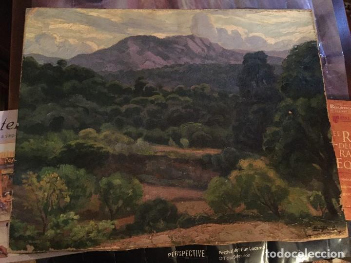 Arte: Evelio Palá, pintura al óleo sobre lienzo, paisaje, medidas aprox.65x50cms. - Foto 3 - 109375143